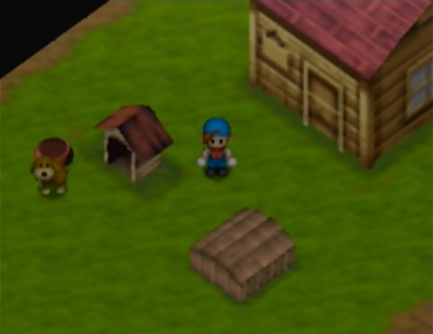 Your farm in Harvest Moon 64